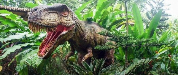 恐龙的来龙去脉  圣经与科学