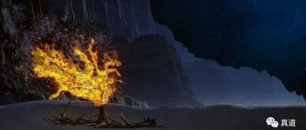邪教公众号<至善的圣君>丨揭露新天地